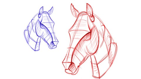 Drawing: How to Sketching & Figure of ANIMALS