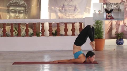 Netcurso-p-tak-fire-element-hatha-yoga-asana-sequence