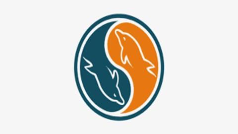 Free Udemy Course - The Ultimate MySQL Crash Course 2021