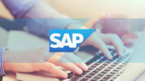 Como ser un Experto en SAP Report Painter