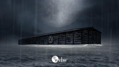 Netcurso-the-reality-of-noahs-ark