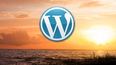Netcurso-1-hour-wordpress-basic-tutorial
