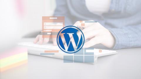 Netcurso-wordpress-no-coding-needed