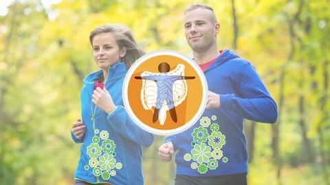 Netcurso-como-optimizar-tu-salud-digestiva