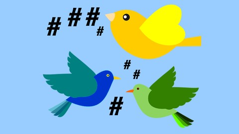 A Basic Understanding Of Hashtags