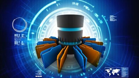 Netcurso-master-data-management-s