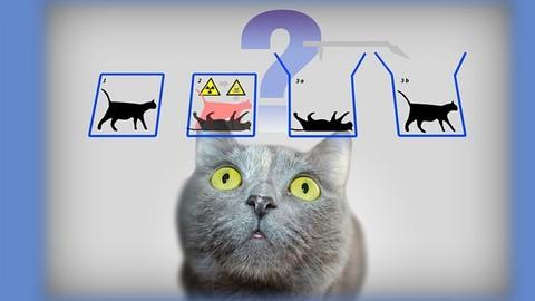 Quantum Physics: an overview of a weird world (Basics)