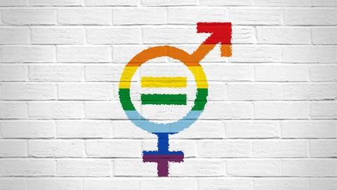 Netcurso-igualdad-de-genero-y-diversidad-sexual