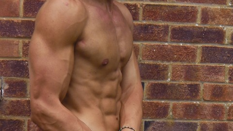 Netcurso-bodybuilding-mastery