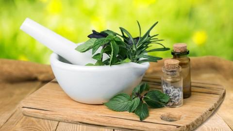 Herbalism :: Introduction & Medicine Making Certificate