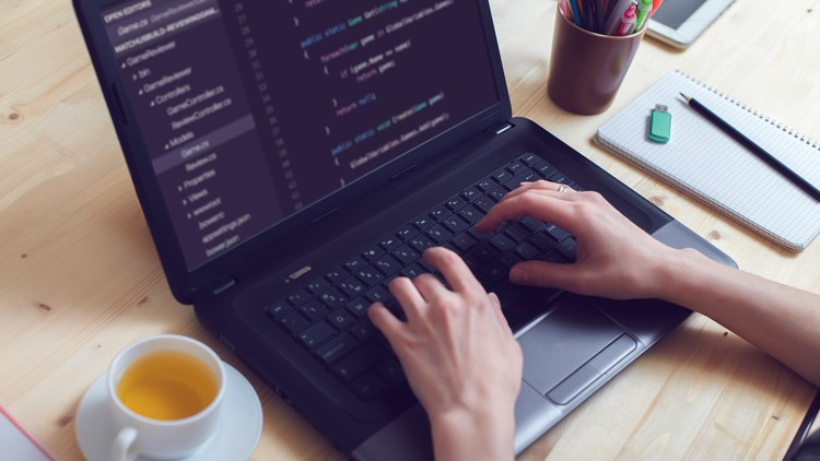 The All-In-One Web Development Course