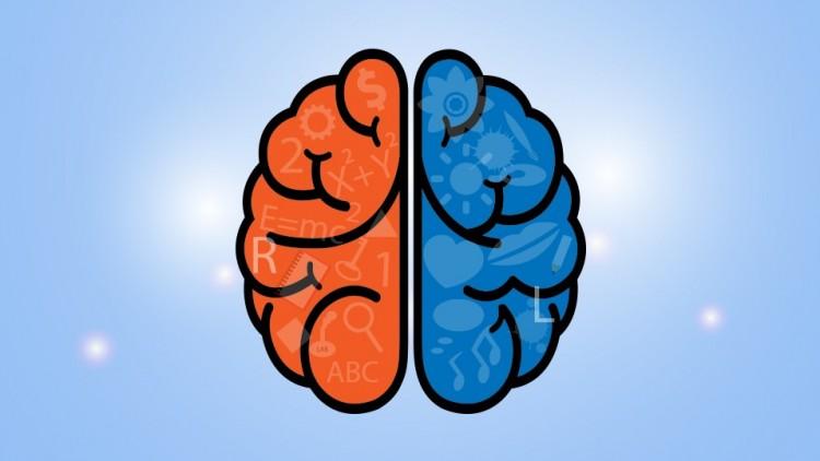 Master Your ADHD Brain!