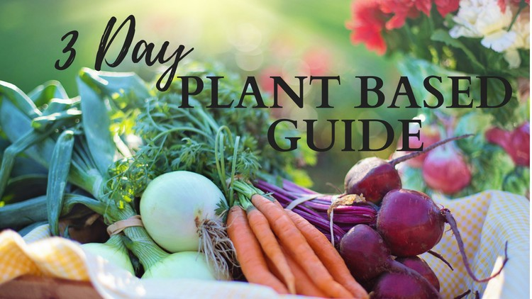 Your Complete 3 Day Guide to a Plant Based/Vegan Lifestyle