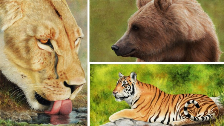 How to Draw Lions, Tigers and Bears using Pastel Pencils