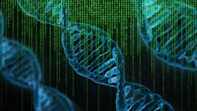 Optimization Using Genetic Algorithms: MATLAB Programming