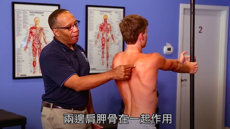 Rehabilitation of the Shoulder and Upper Extremity