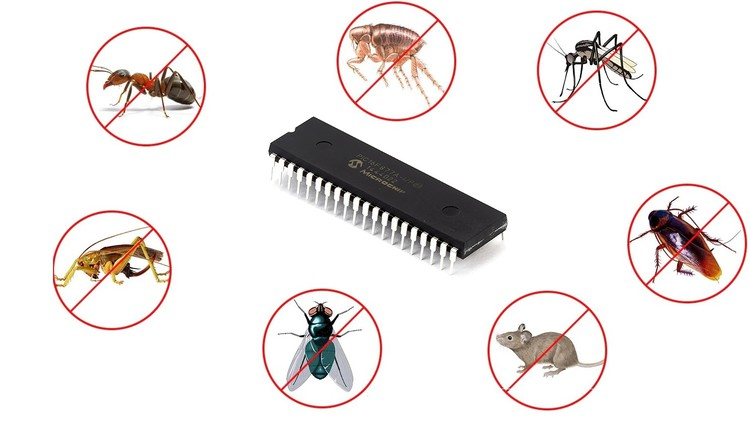 PIC Microcontroller Insect Detector