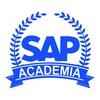 Imágen de Academia SAP